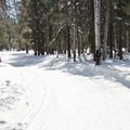 Most trails are groomed for both classic and skate skiing.- Arizona Nordic Village