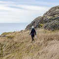 Trail along the cliff from the point.- Lopez Island: Iceberg Point