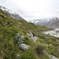 The western approach to Hooker Lake is less defined and requires some routefinding.- Hooker Valley Track