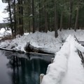 Footbridge across the McKenzie River at the south end of Clear Lake.- Clear Lake Snowshoe