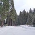 Ikenick Sno-Park.- Clear Lake Snowshoe