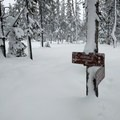 Adequate signs along the trail will help you stay on the right path.- Nordeen Shelter via Snowshoe Long Loop
