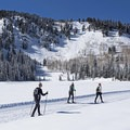 The cross-country ski course.- Solitude Nordic Center