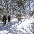 Snowshoeing at Solitude Nordic Center.- Solitude Nordic Center