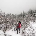 Hiking into the clouds...always a cool feeling- Bells Canyon Lower Falls Snowshoe