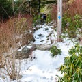 More snow on the way to the summit.- Mount Mitchell via Black Mountain Campground