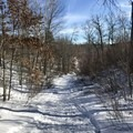 Start of the trail is packed down from frequent use.- North Country Trail, Shingobee Recreational Area