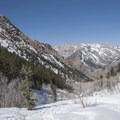 Looking north and down canyon.- Lake Blanche Snowshoe