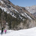 Snowshoes may not be necessary when the trail has been packed down.- Lake Blanche Snowshoe