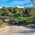 Serrano Creek Trail.- Serrano Creek Trail