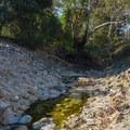 Serrano Creek.- Serrano Creek Trail