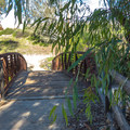 Crossing Serrano Creek on the Serrano Creek Trail.- Serrano Creek Trail
