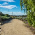 The section north of Trabuco Road.- Serrano Creek Trail