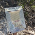 Signs along the trail inform visitors about the local flora and fauna.- Serrano Creek Trail