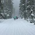 Skiers on the road entrance to Todd Lake.- Todd Lake Cross-country Ski + Snowshoe