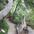 The walking path in Montezuma Castle National Monument.- Montezuma Castle National Monument