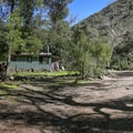 Several cabins are nestled in Holy Jim Canyon.- Holy Jim Falls
