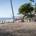 A volleyball net at La'aloa Bay Beach Park.- La'aloa Bay Beach Park / Magic Sands Beach