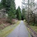 Row River National Recreation Trail near Harms Park.- Harms Park, Dorena Reservoir