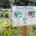 """Areas of the park are set aside as """"Monarch Waystations"""" to help with the Monarch butterfly migration.- Bake Stewart Park"""