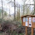 Informaiton sign in Bake Stewart Park near the Row River Trail.- Bake Stewart Park