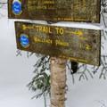Trail to Wallface Ponds.- MacNaughton Mountain Snowshoe via the Wallface Ponds