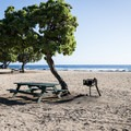 There are plenty of picnic areas at Old Kona Airport Beach Park.- Old Kona Airport Beach Park
