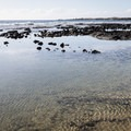 Tide pools at Old Kona Airport Beach Park.- Old Kona Airport Beach Park