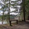 Row River Trail near Dorena Dam. - Row River National Recreation Trail