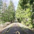 Row River Trail. - Row River National Recreation Trail