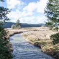 Smith Creek near Dorena Lake.- Row River National Recreation Trail