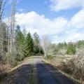 Row River Trail.- Row River National Recreation Trail