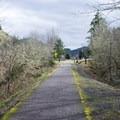 Row River Trail near Bake Stewart Park. - Row River National Recreation Trail