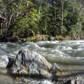 Newly formed rapids from recent high flows.- Big Sur River: Gorge to Andrew Molera