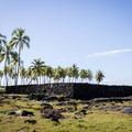 The Great Wall that encloses the Pu'uhonua.- Pu'uhonua O Hōnaunau National Historical Park
