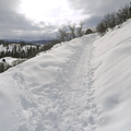 Trail after a switchback.- Uranium Mine Snowshoe