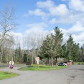 Parking area for Mosby Creek Trailhead.- Mosby Creek Trailhead