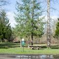 Dog walking area in the Mosby Creek Trailhead park.- Mosby Creek Trailhead