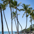 The north end of A-Bay Beach.- 'Anaeho'omalu Bay / A-Bay Beach