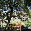 The entrance to Kealakekua Bay State Historical Park.- Kealakekua Bay State Historical Park