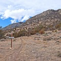 Views along the Middle View Trail.- Middle View Trail