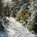 Van Hovenberg Trail.- Table Top Mountain Snowshoe