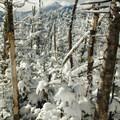 View toward the MacIntrye Range.- Table Top Mountain Snowshoe
