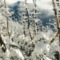 View toward Mount Marcy from Table Top Mountain.- Table Top Mountain Snowshoe