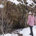 This cougar den was just about 30 feet from the carcass.- Heughs Canyon Snowshoe