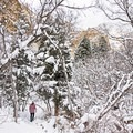 A winter wonderland in the Heughs Canyon Snowshoe.- Heughs Canyon Snowshoe