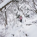 Winter wonderland in Heughs Canyon.- Heughs Canyon Snowshoe