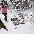 The bridge near the end of the trail.- Heughs Canyon Snowshoe