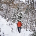 Microspikes can be a great choice in Heughes Canyon when the trial is packed.- Heughs Canyon Snowshoe