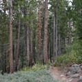 Panorama Trail in Yosemite National Park.- Panorama Trail